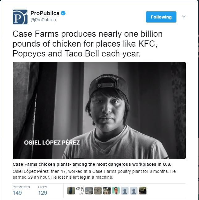 investigation on workers injured at Case Farms on Pro Publica Twitter
