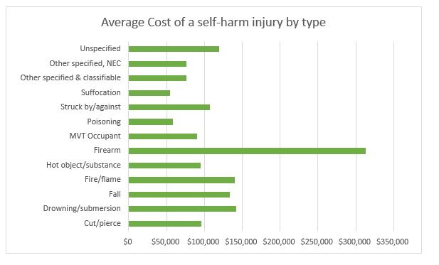 Average cost of a self-harm injury