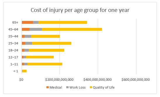 Cost of injury per category for one year
