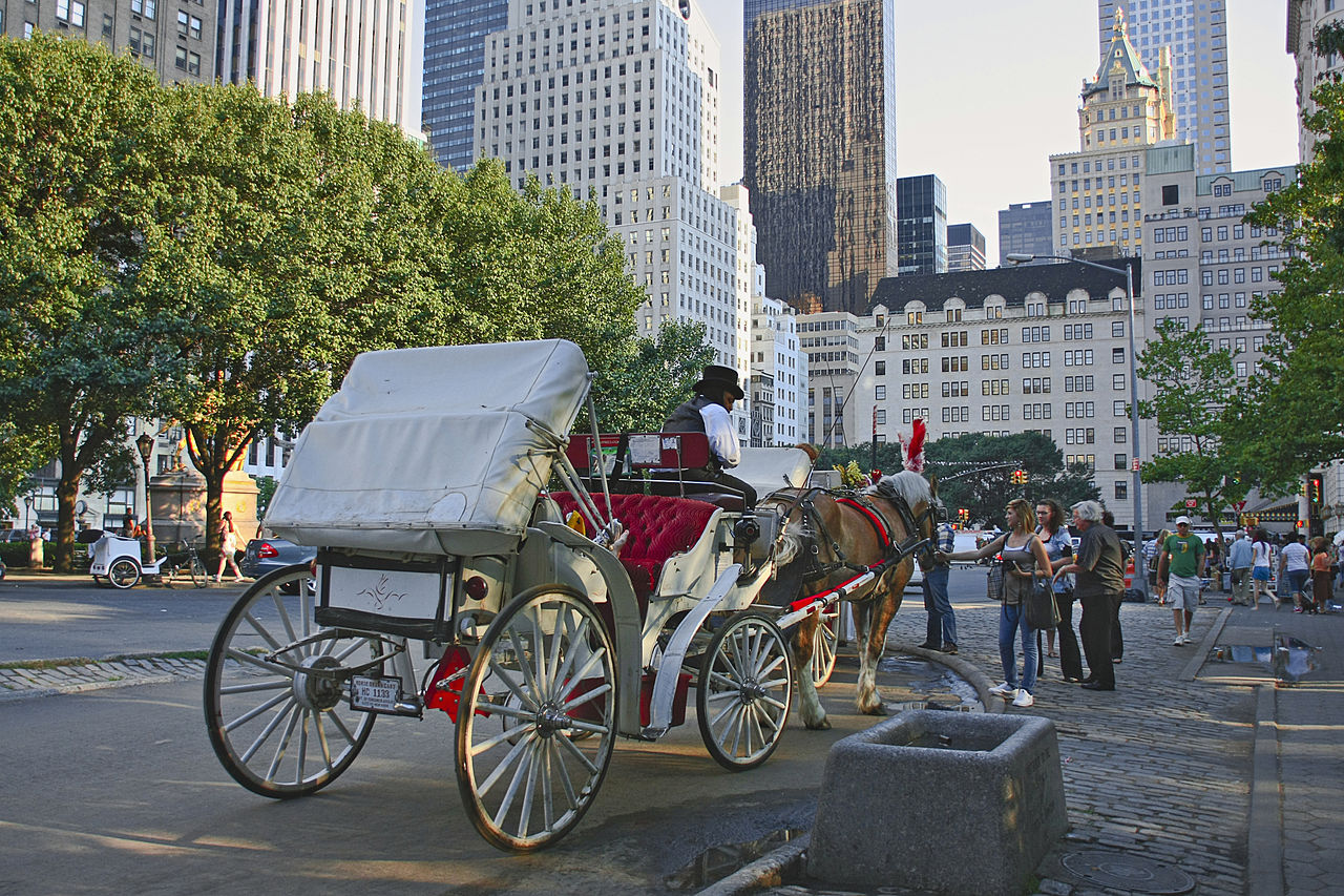 https://www.newyorkpersonalinjuryattorneysblog.com/files/2019/09/New_York._Central_Park._Carriage.jpg